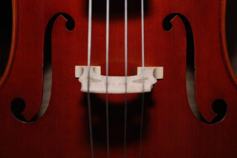 バイオリンのドアップ